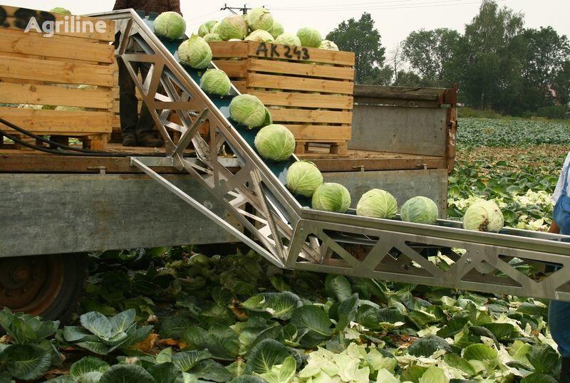 raccogli patate GRIMME Transporter dlya uborki kapusty nuovo